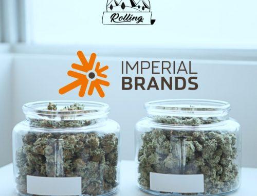 Dopo PMI anche Imperial investe nella cannabis