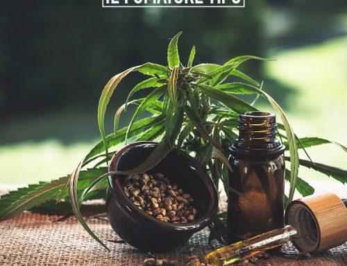 Olio di THC: è pericoloso?
